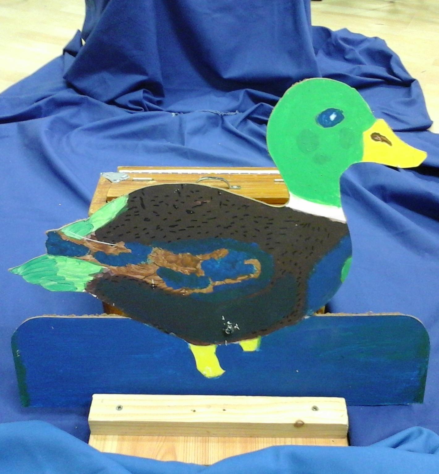 oiseau 09 - canard