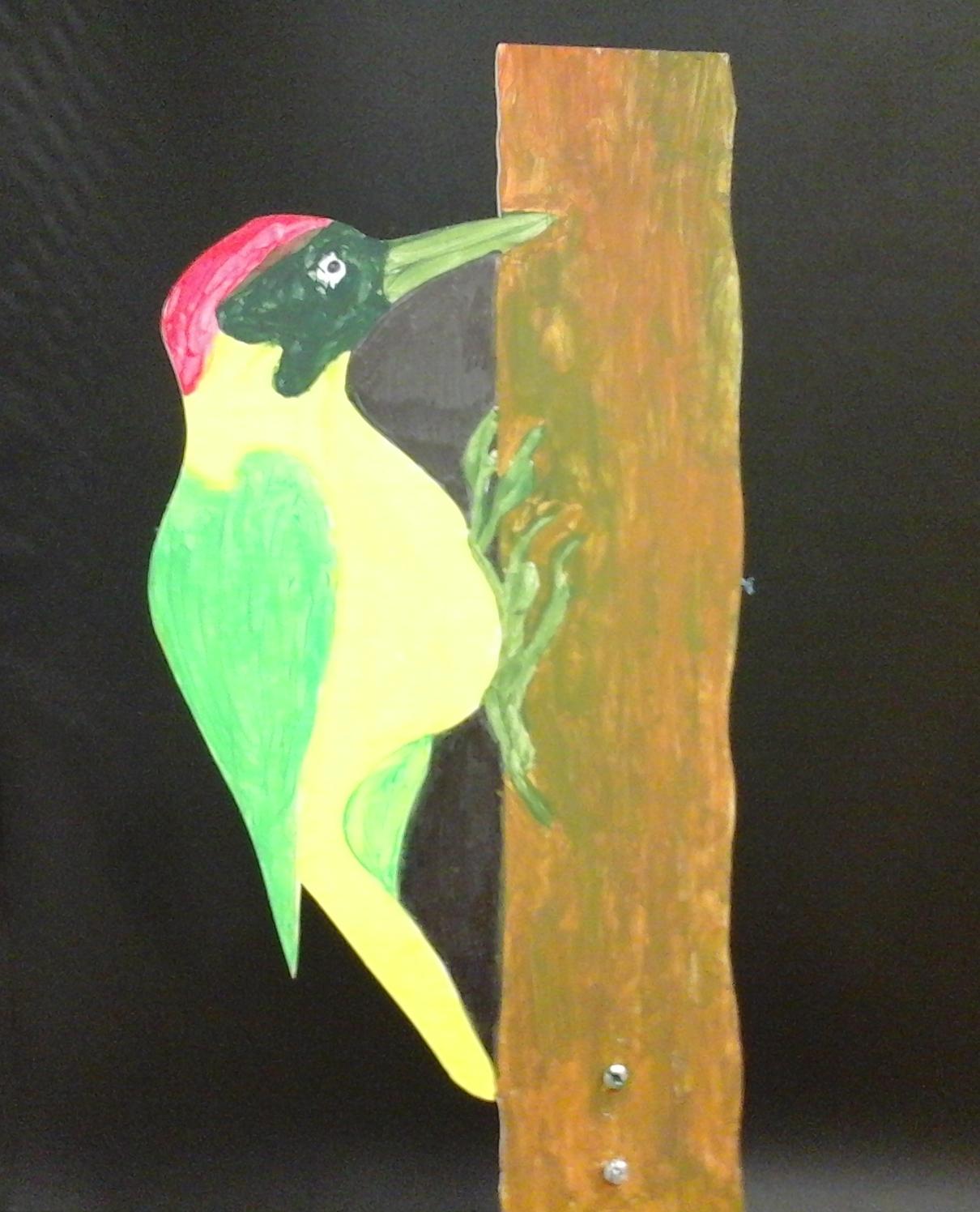 oiseau 10 - pic vert